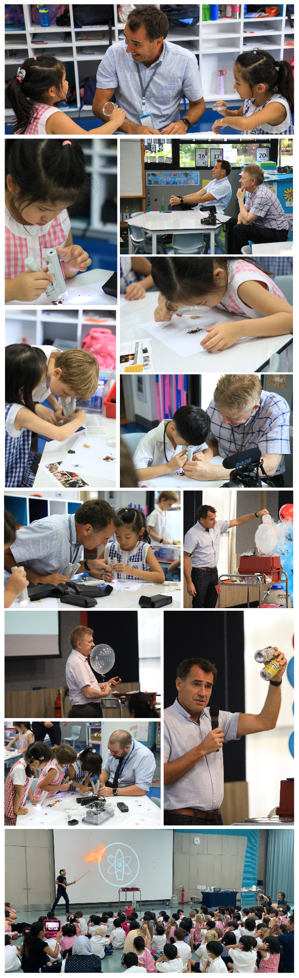Year 1 visiting scientists